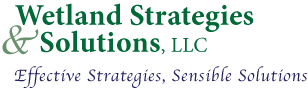 Wetland Strategies and Solutions, LLC, Effective Strategies, Sensible Solutions